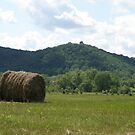 Hills of the Kickapoo by AuntieJ