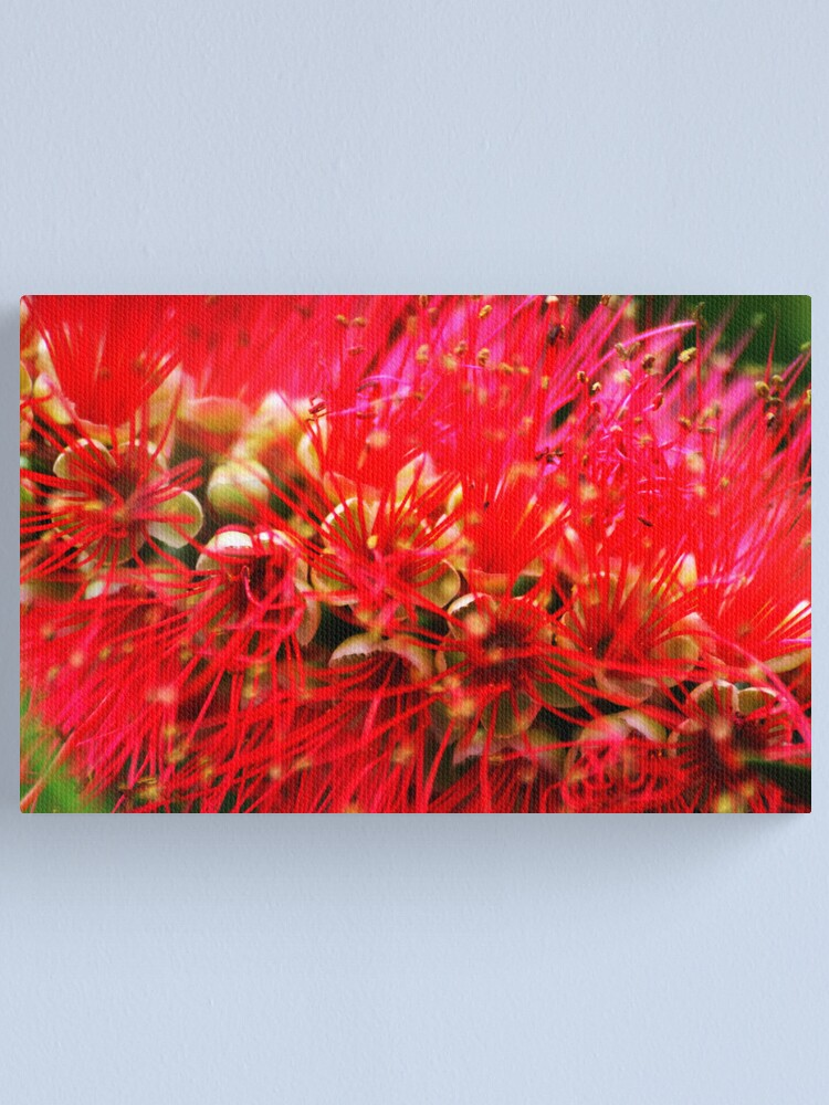 Alternate view of Explosion of Red Canvas Print