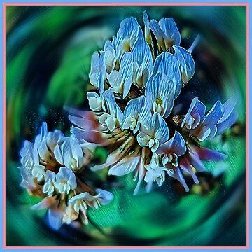 Blue clover by mauriandbrio