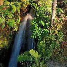 Wayside Cascade by WatscapePhoto