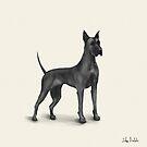 Great Dane Drawing in Black Digital Ink by ibadishi