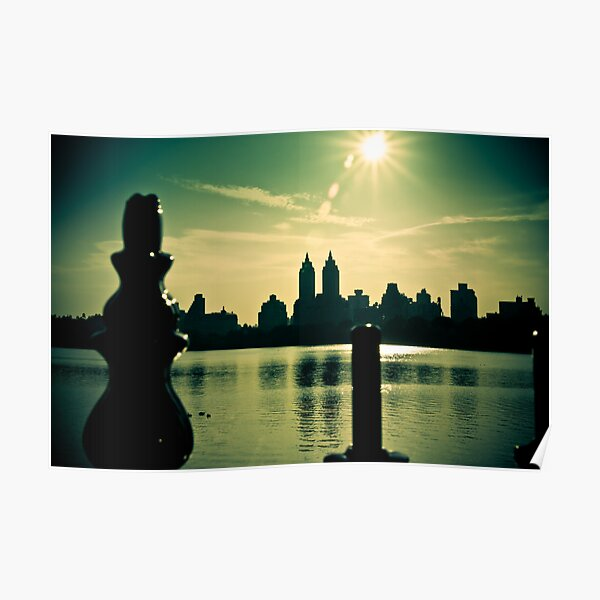 View from Central Park Poster
