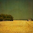 white barn by paulgrand