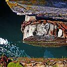 Logs Chained by Tamara Valjean