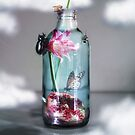 Glass Bottle with Life  by damien carroll