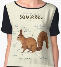 Anatomy of a Squirrel Chiffon Top