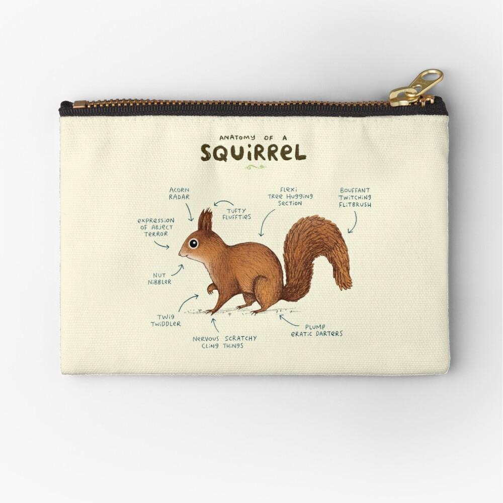 Anatomy of a Squirrel Zipper Pouch