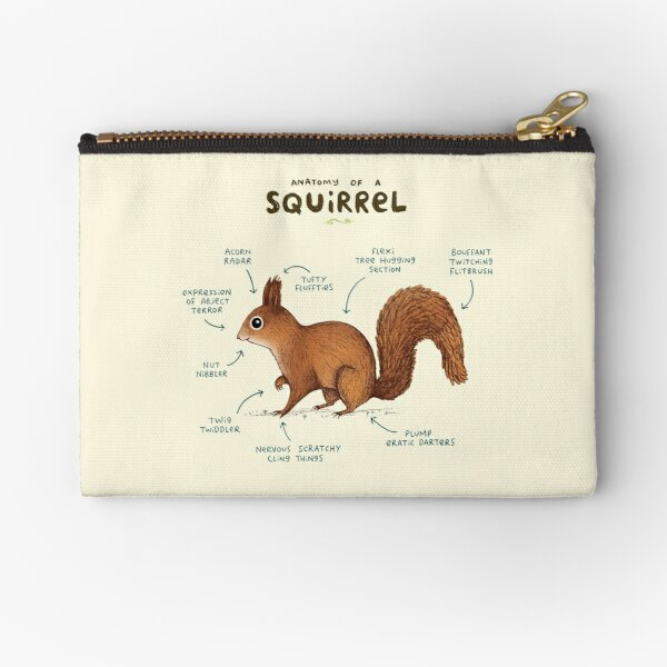 Anatomy of a Squirrel Zipper Pouch