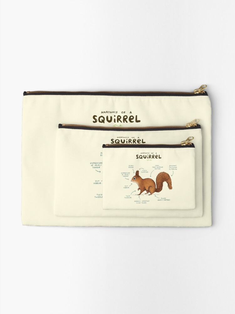 Alternate view of Anatomy of a Squirrel Zipper Pouch