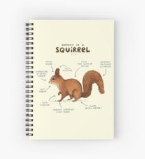 Anatomy of a Squirrel Spiral Notebook