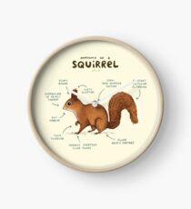Anatomy of a Squirrel Clock