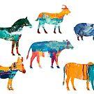 Colourful Animals by Sunil Bhardwaj