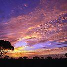 Madura Sunrise by Brian Downs