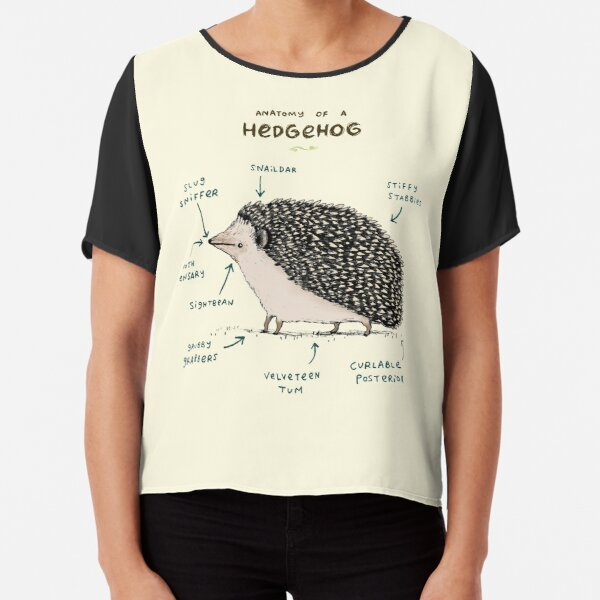Anatomy of a Hedgehog Chiffon Top