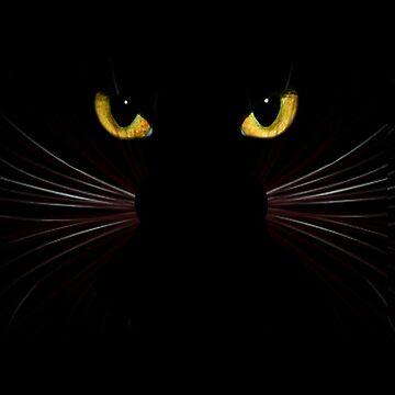 Black Cat by sandnotoil