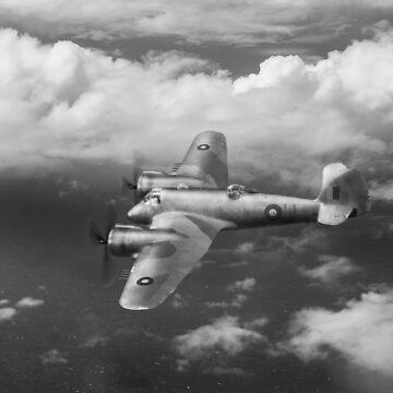 SEAC Beaufighter B&W version by garyeason