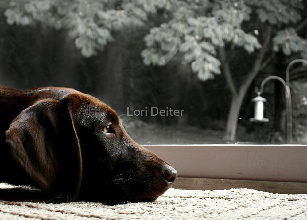 Missing You.... by Lori Deiter