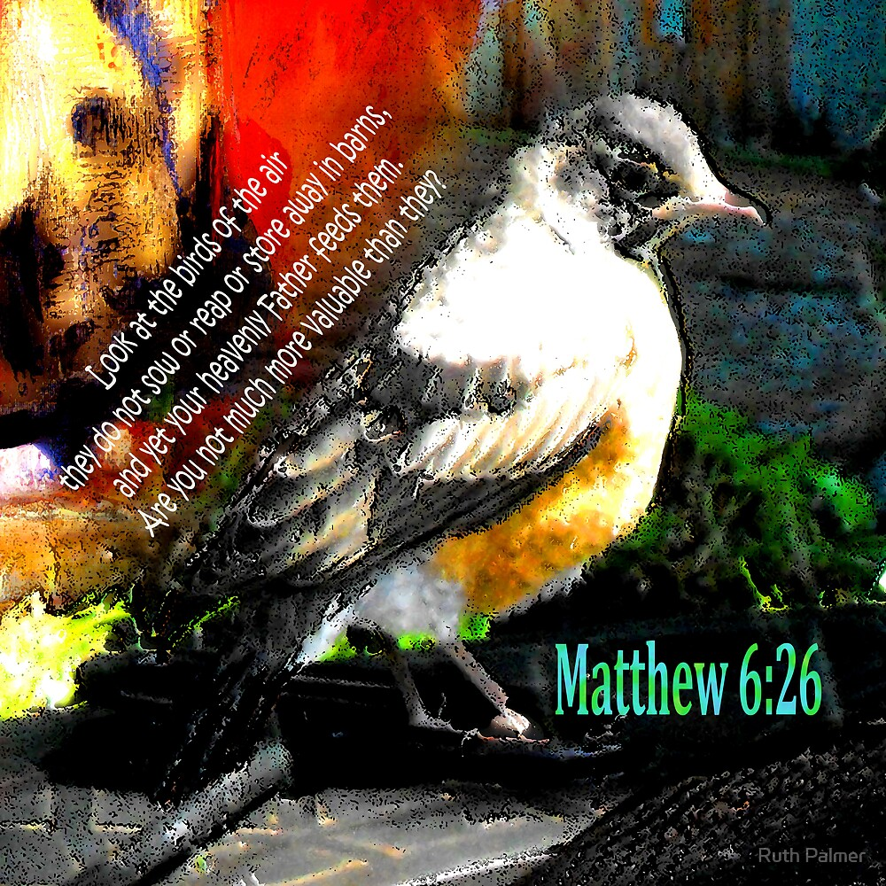 Matthew 6:26 Robin by Ruth Palmer