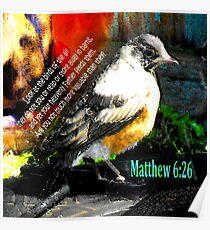 Matthew 6:26 Robin Poster