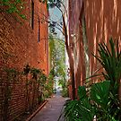 The Alley-way by TJ Baccari Photography