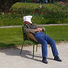 Afternoon nap in the sun. by naranzaria