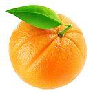 Orange fruit by 6hands