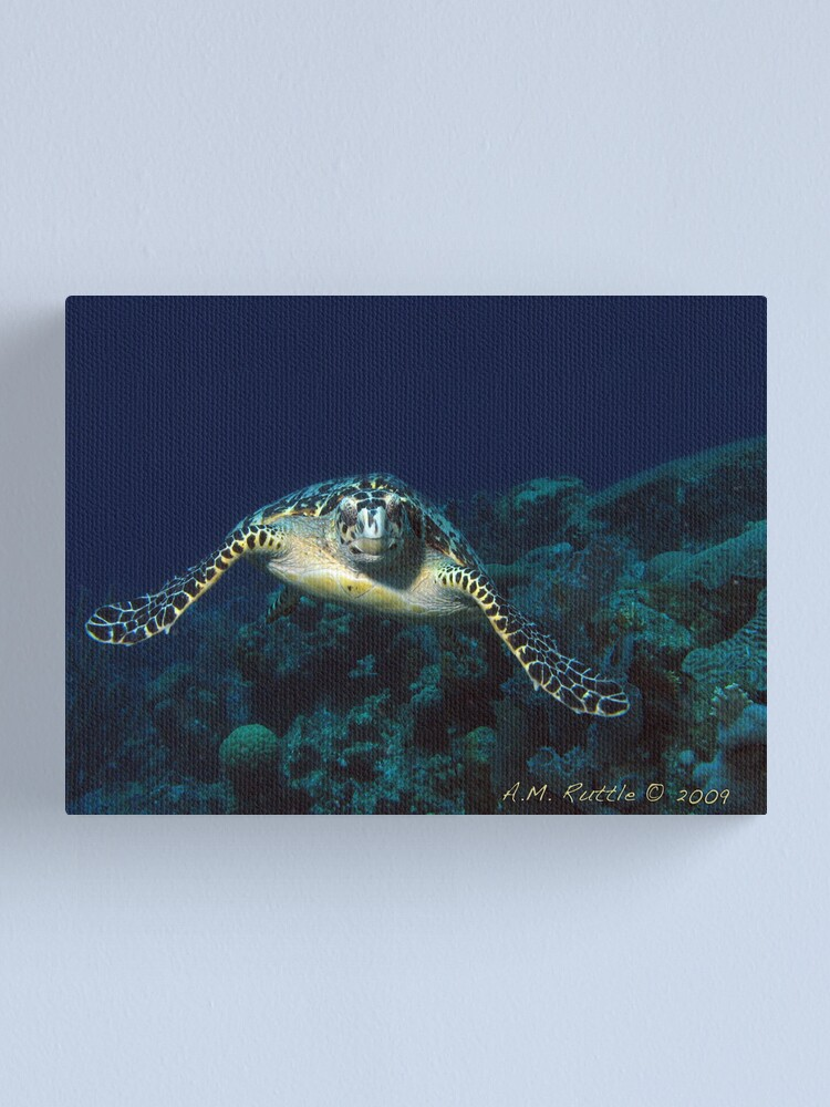 Alternate view of Coming At You Canvas Print