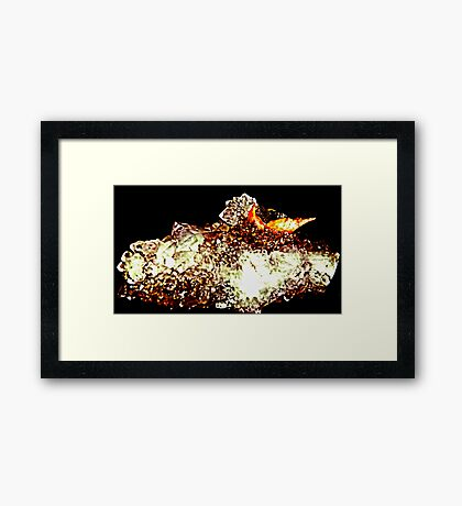 Amethyst Light  Framed Print