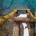 Step in the water by Zvonko Jerkovic