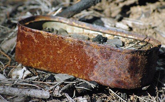 rusty sardines by feeee