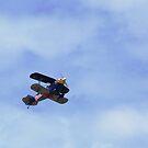 Red Bulls do fly by Graham Mewburn
