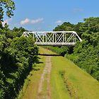 Local Landmark Bridge by Cynthia48