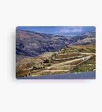 Landscape in Jordan Canvas Print