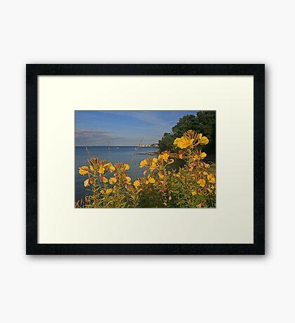 Studland Framed Print