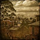 Fitzroy Rooftops by Christine Wilson