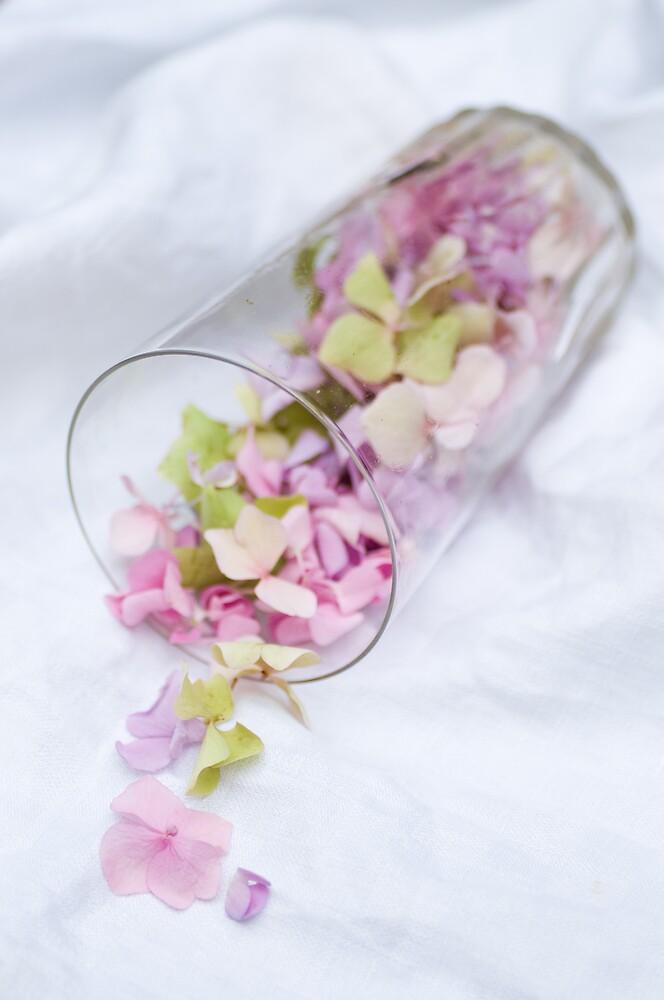 A Glass Half Full by Ilva Beretta