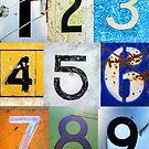 1,2,3,4,5,6,7,8,9 All The Numbers! In A Row! by Shelly Still