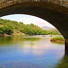 Water through the bridge by Tridib Ghosh