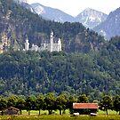 Castle Neuschwanstein - King Ludwig II - Bavaria by Daidalos