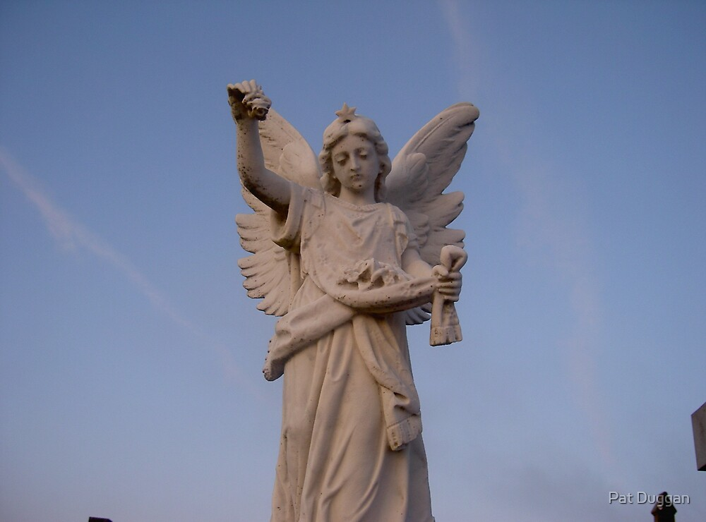 Angel in the Blue-Sky---Guards a Childs Grave at St.Marys Cemetry[view large] by Pat Duggan