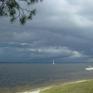 Storm on St. Andrews Bay by MayLattanzio