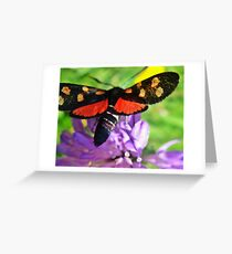 Cool black butterfly with red polka dots Greeting Card