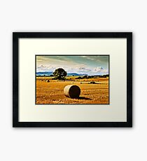 golden fields of hay, irish landscape Framed Print