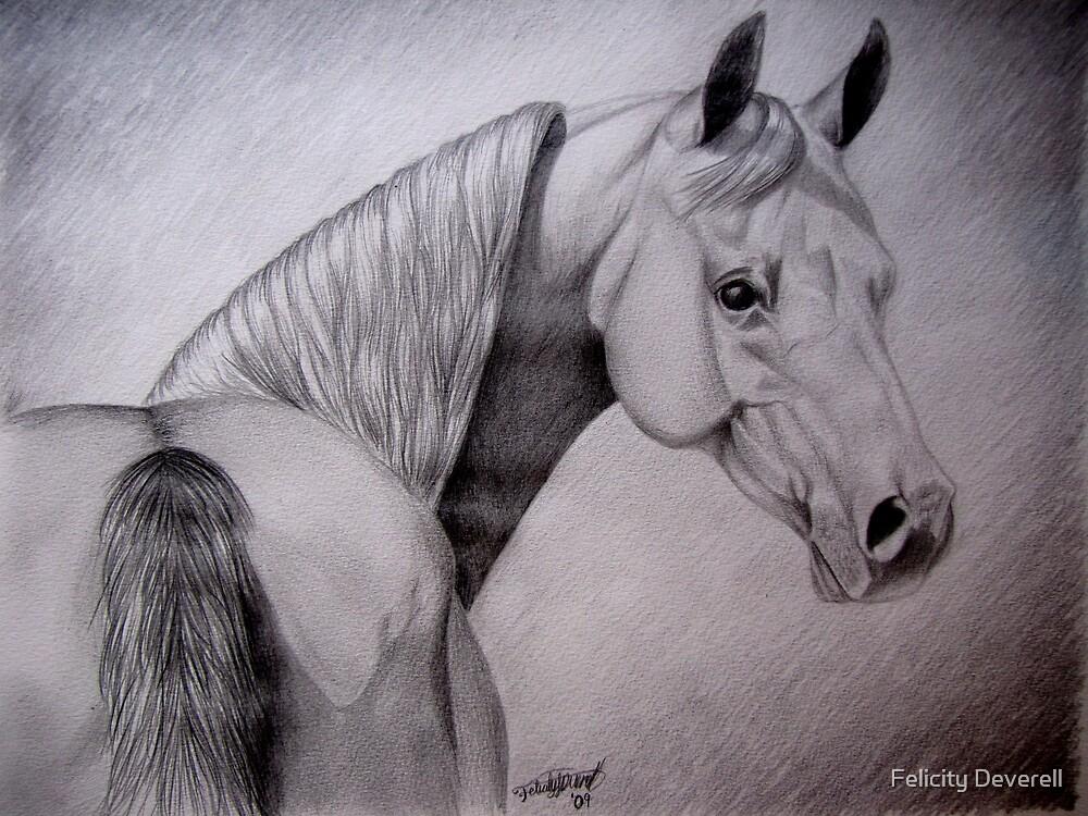 Arabian Mare by Felicity Deverell
