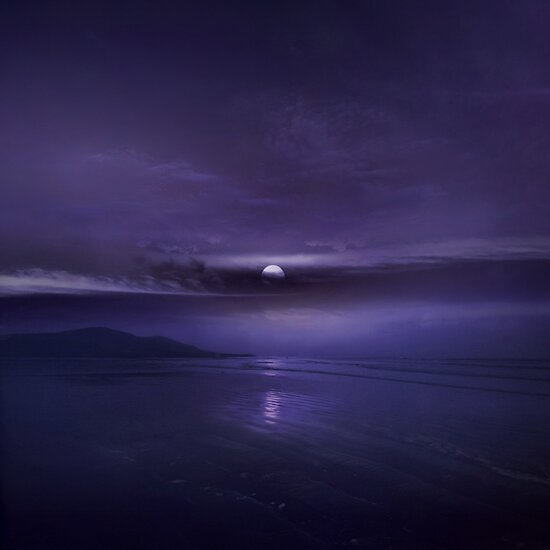 DREAMING VIOLET by KEIT