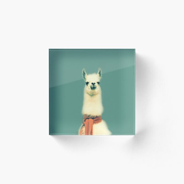 Llama Acrylic Block