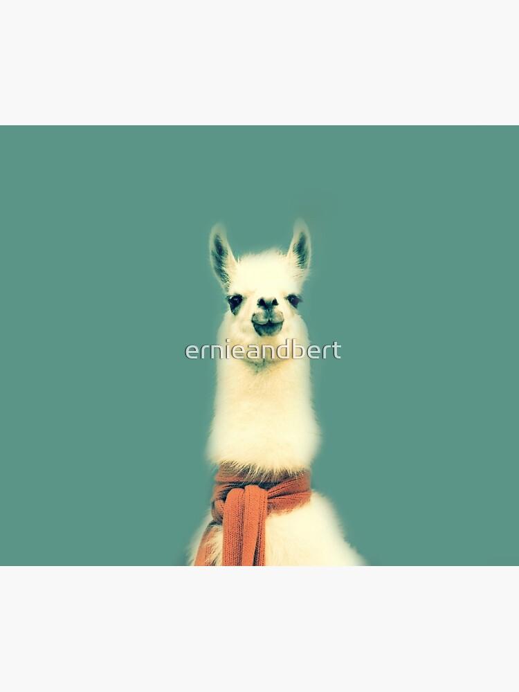 «Lama» par ernieandbert