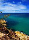 Emerald Sea by Extraordinary Light