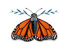 Monarch Butterfly by Karin Taylor