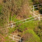 Duelling Stairs by coastal